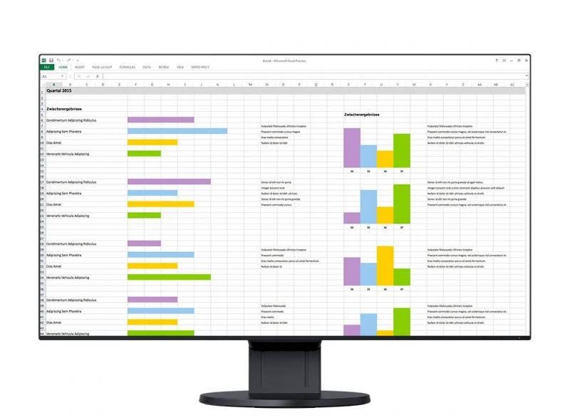 Monitor Eizo FlexScan EV2456