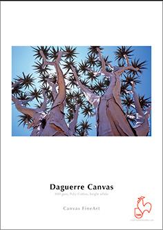 Papel Hahnemühle Daguerre Canvas 400grs