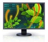 Monitor Eizo FlexScan EV2416W