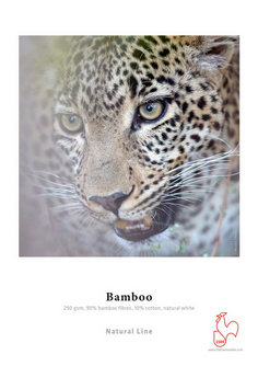 Papel Hahnemühle Bamboo 290grs